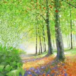 Woodland Open Exhibition at Cornerstone, Didcot